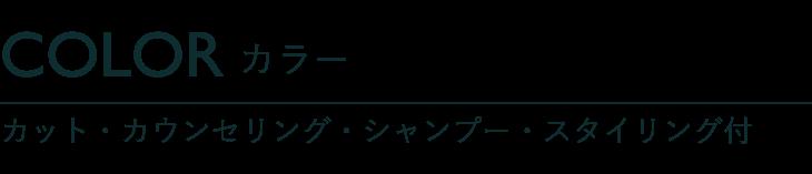 カラー カット・カウンセリング・シャンプー・スタイリング付