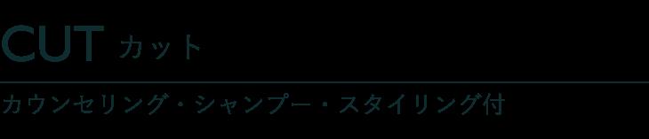 カット カウンセリング・シャンプー・スタイリング付