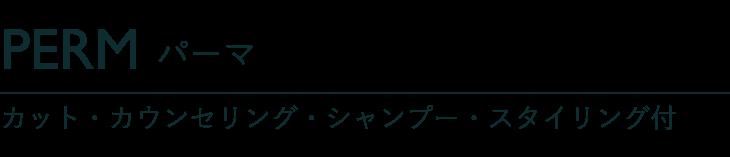 パーマ カット・カウンセリング・シャンプー・スタイリング付