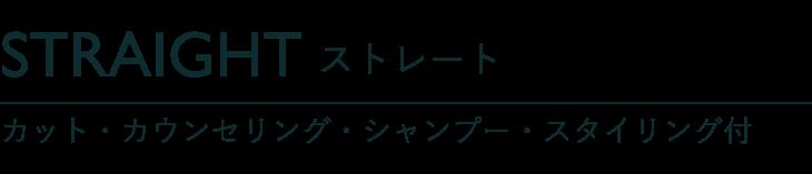 ストレート カット・カウンセリング・シャンプー・スタイリング付